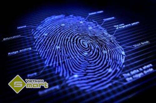Công nghệ sinh trắc học cảm biến dấu vân tay
